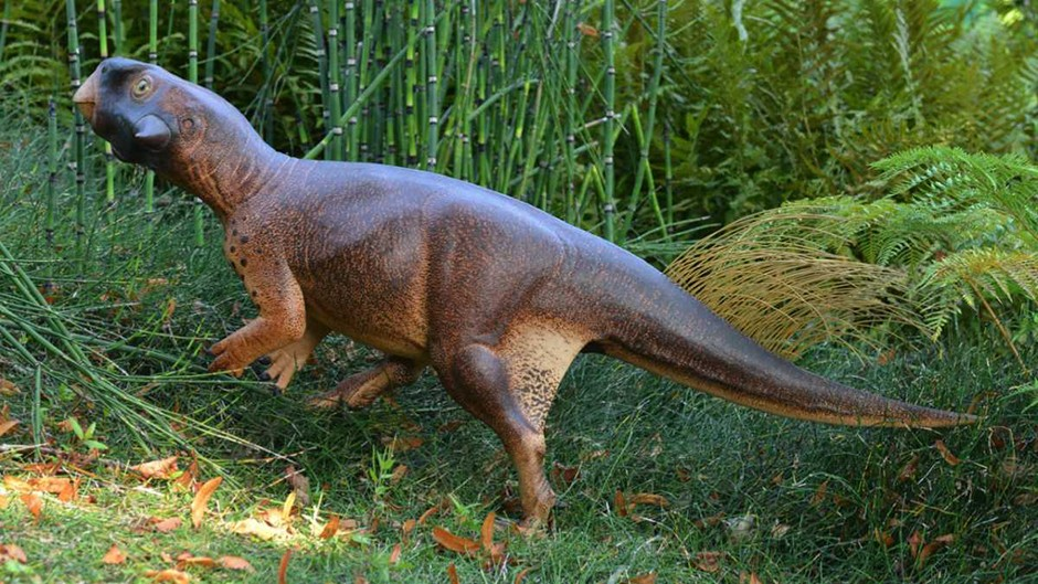 Scientists team up with artist to make the most realistic dinosaur model ever © Jakob Vinter