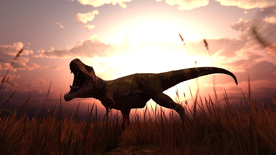 Dino teeth the secret to T rex's success © Getty Images