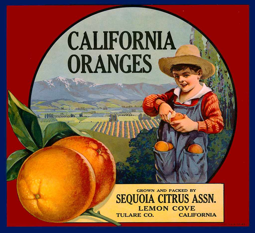 An orange crate label produced around 1910 in Los Angeles, California © Transcendental Graphics/Getty Images