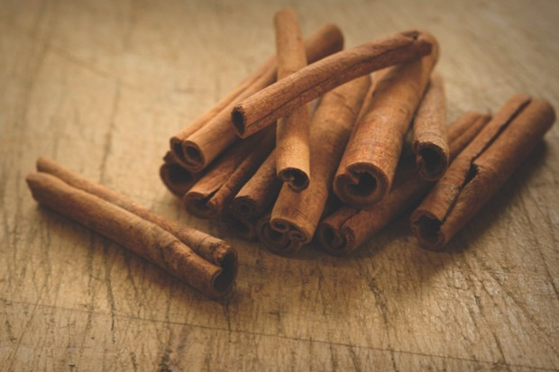 Cinnamon is made from the bark of trees in the genus Cinnamomum – primarily the species C. verum and C. cassia © Getty Images