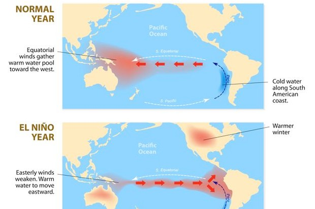 diagram shows the El Nino phenomenon. El Niño is a disruption of the ocean and atmosphere system in the Pacific ocean having important consequences for weather around the globe.