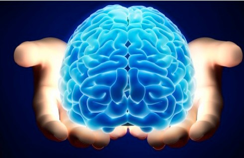 The power to control the brain is in our hands (credit: Cheltenham Science Festival)