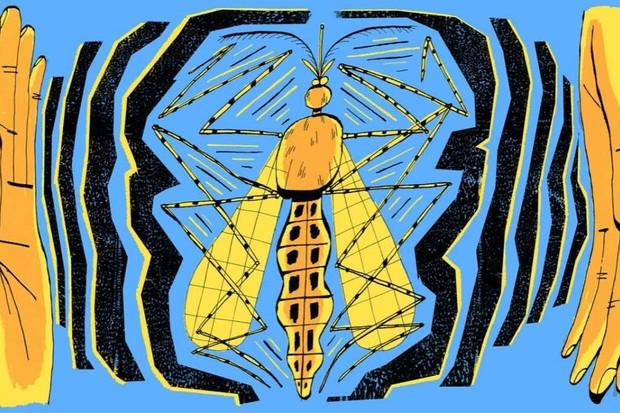 Mathew-Hodson_Mosaic_Insect-Symphonies_Hero crop