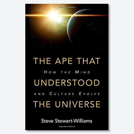 Parts of this article were excerpted, with changes, from the book The Ape That Understood the Universe: How the Mind and Culture Evolveby Steve Stewart-Williams (Cambridge University Press)