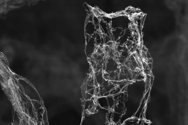 aerographite-microscopy