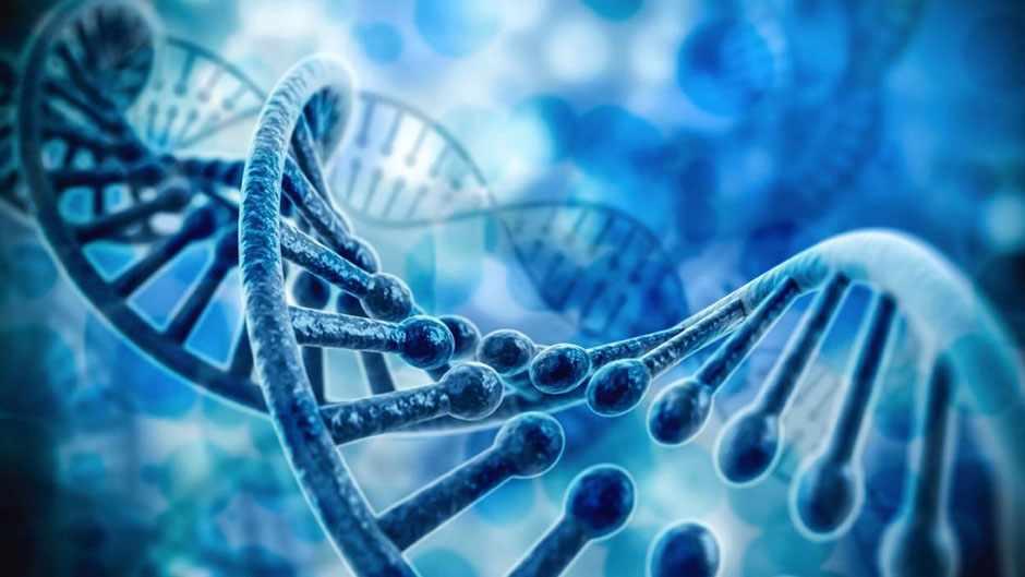 Epigenetics - bridging the gap between nature and nurture © iStock