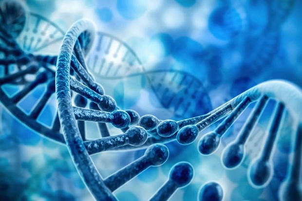 Epigenetics - bridging the gap between nature and nurture © iStock