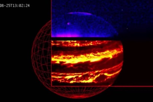 Infrared image showing Jupiter's aurora (blue) and internal glow (red) © NASA/JPL-Caltech/SwRI/ASI/INAF/JIRAM