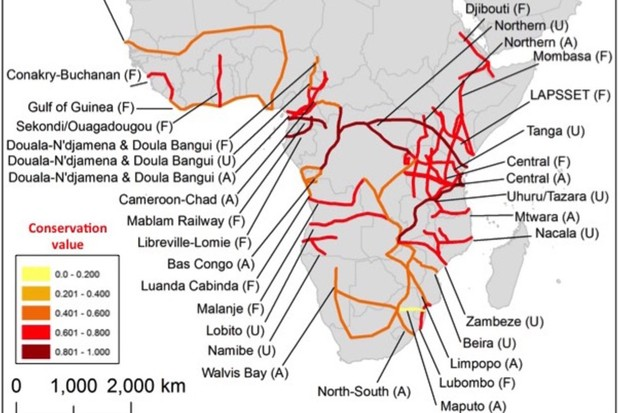 Proposed and ongoing 'development corridors' in sub-Saharan Africa, ranked by the relative conservation value of habitats likely to be affected by each corrido © Bill Laurance/Sean Sloan