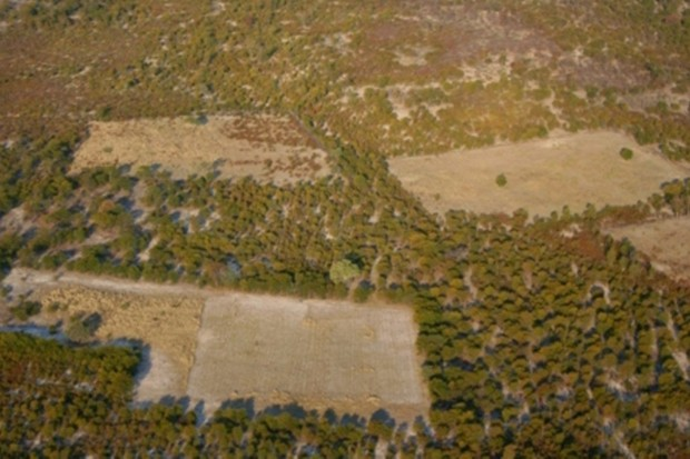 Woodland clearing for agriculture in Botswana's Okavango Delta © Jeremy Hance