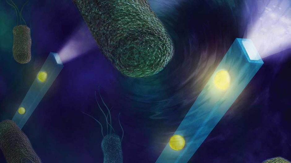 Nano-stethoscope can listen to individual cells © Rhett S. Miller/UC Regents