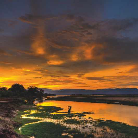Mana Pools National Park, Northern Zimbabwe © Getty Images.
