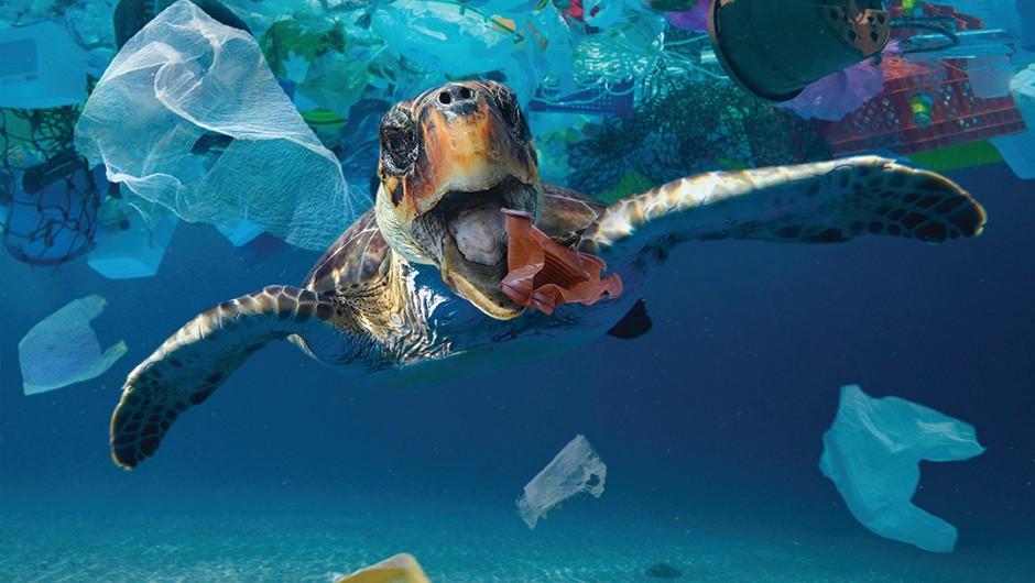 The Plastic Age © Alamy