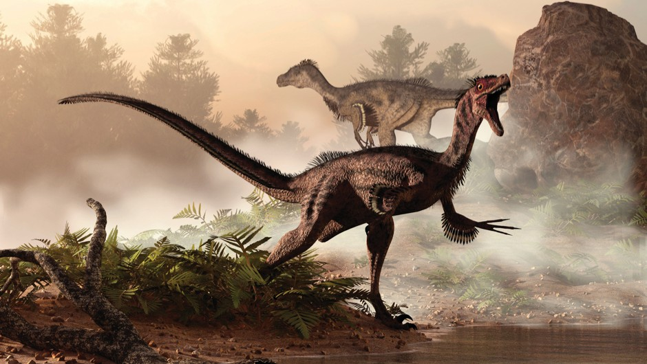 Lungs similar to those of some modern-day birds might have helped dinosaurs breathe the thin air of the prehistoric world © Chinese Academy of Sciences