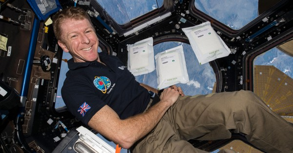 Are you smart enough to be an ISS astronaut?