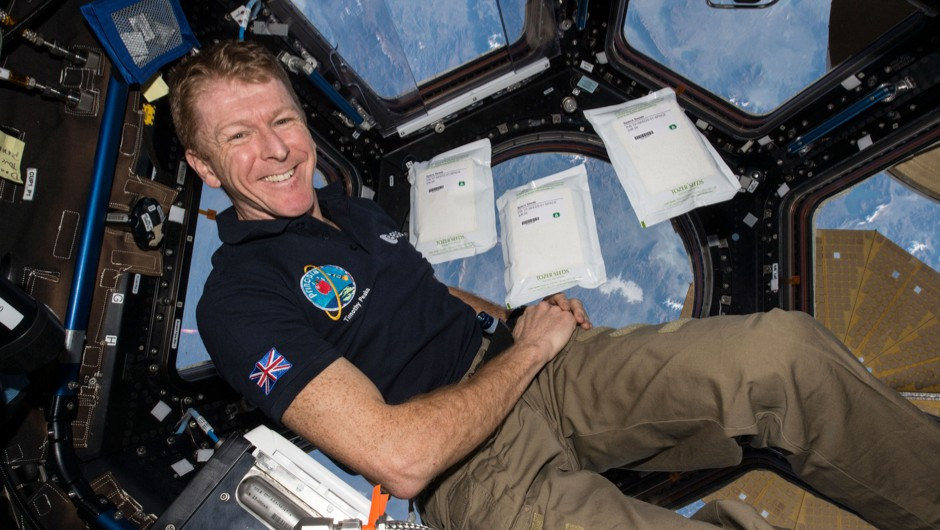 Are you smart enough to be an ISS astronaut? (Tim Peake © ESA/NASA)