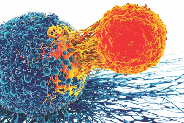 Cancer cell and T cell © Getty Images