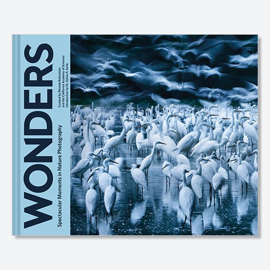 Wonders: Spectacular Moments in Nature Photography Rhonda Rubinstein £26, Chronicle Books