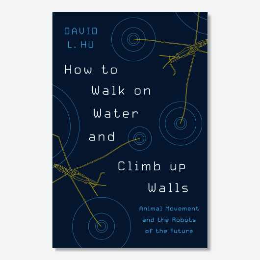 David Hu is the author of How to Walk on Water and Climb up Walls: Animal Movement and the Robots of the Future (£20, Princeton University Press)