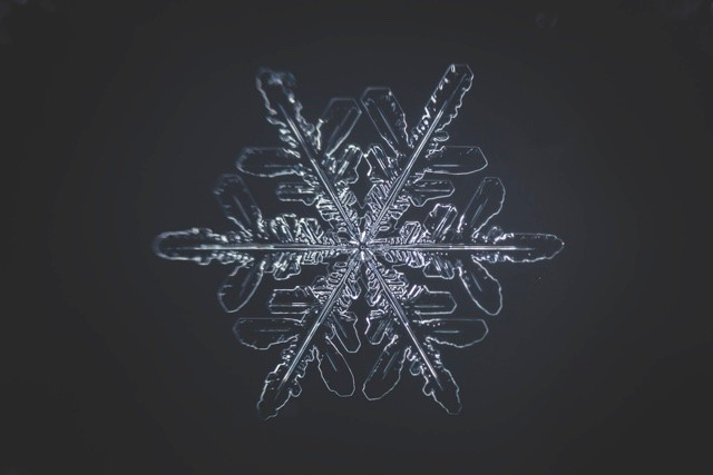 Snowflakes are complicated, forming due to liquid water crystallising into ice, but they are not alive © Getty Images