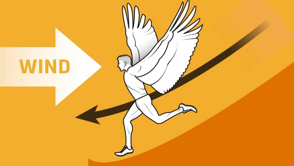 The thought experiment: What would happen if humans grew wings?