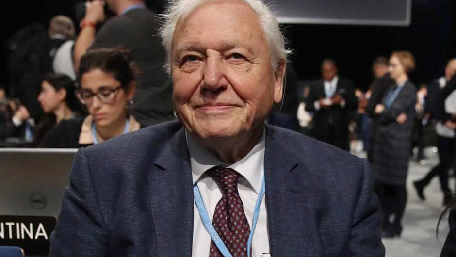 David Attenborough attends the opening ceremony of the COP 24 United Nations climate change conference on December 03, 2018 in Katowice, Poland © Sean Gallup/Getty Images