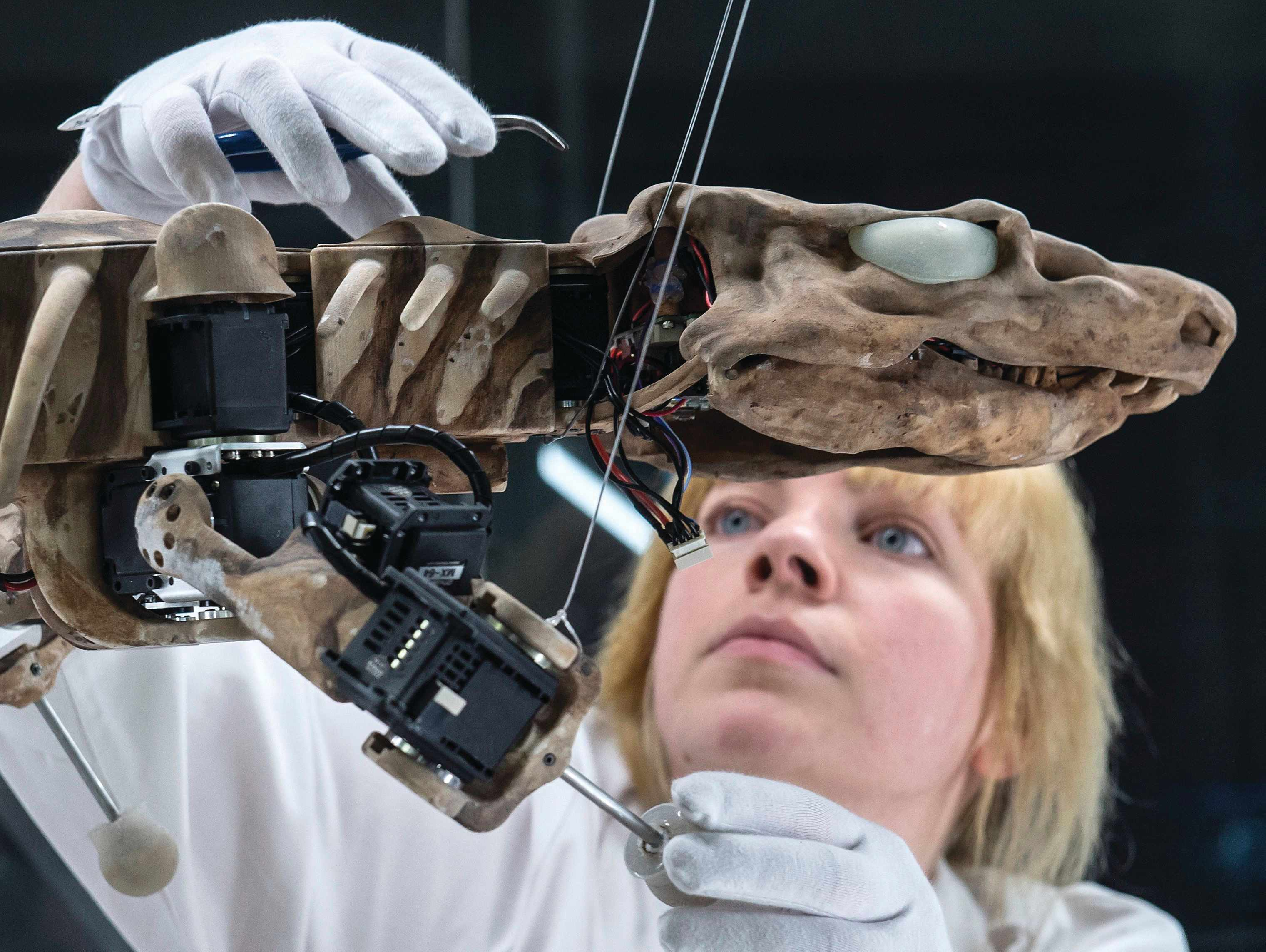 Stefanie Griebsch prepares a modified OroBOT for a demonstration of its walking ability © Shutterstock