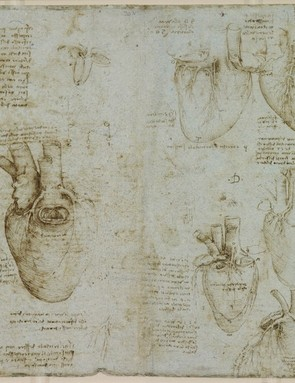 The heart and coronary vessels, c.1511-13 (Royal Collection Trust / © Her Majesty Queen Elizabeth II 2019)