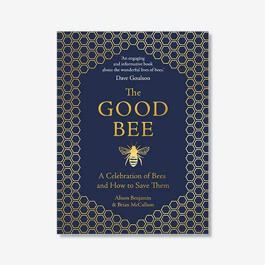 The Good Bee (£9.99, Michael O'Mara Books)