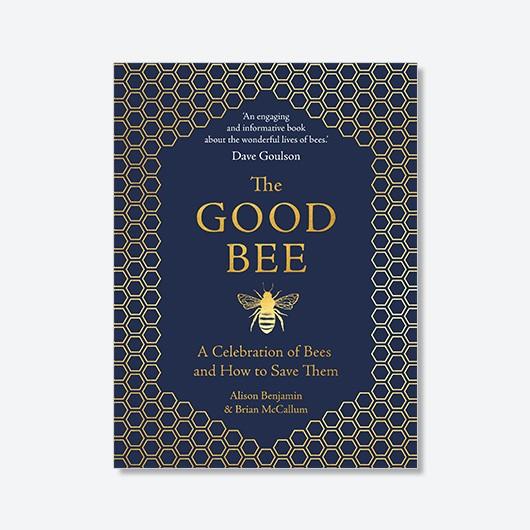 The Good Bee (£9.99, Michael O'Mara Books)