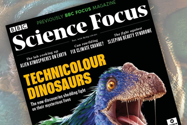 Technicolour dinosaurs © Magic Torch