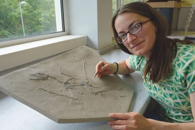 Dr Maria McNamara was part of the team that found evidence of feathers and melanosomes in pterosaurs © John Sheehan