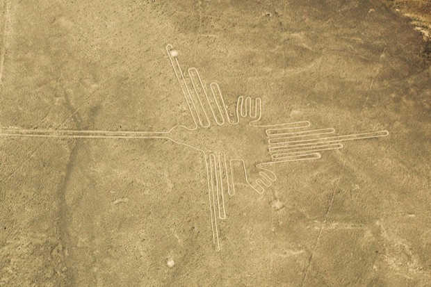 Exotic migratory birds identified in Peru's mysterious Nazca lines © Getty Images