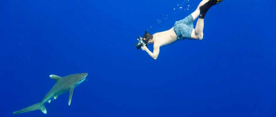 How to choose the best underwater camera © Getty Images