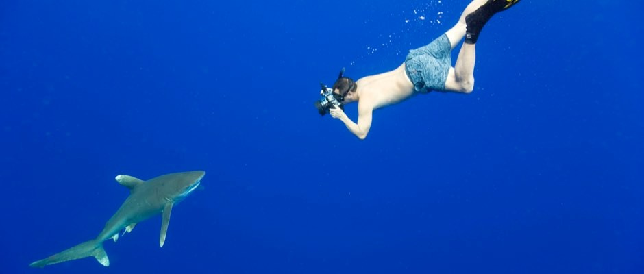 How to choose the best underwater camera