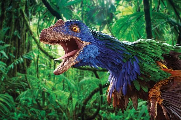 Dinosaurs: now in colour (Caihong juji © Magic Torch)