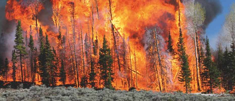 Wildfires: the science behind the burn © USDA Forest service