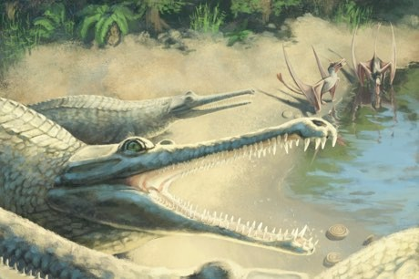 Make it snappy! Crocodile fossil identified after 250 year wait © An illustration of the Mystriosaurus (Julia Beier/PA)