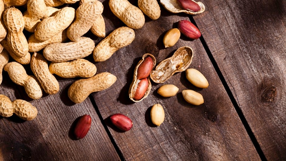 Tiny doses of peanut protein offers hope to allergy