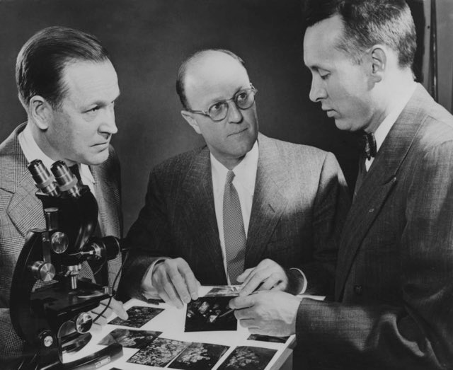 From left to right, Dr Herbert M. Strong, Dr Chauncey Guy Suits and Dr H. Tracy Hill examine photomicrographs of diamond crystals formed in a press at the GE Research Laboratories in Schenectady, New York, 1955 © Keystone/Hulton Archive/Getty Images