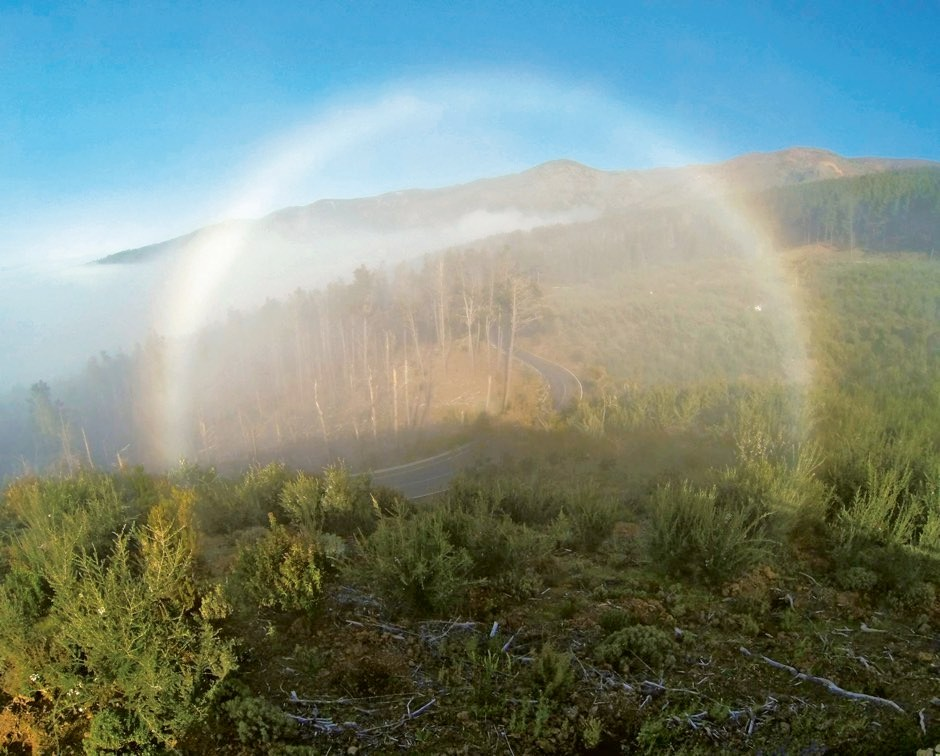 Fogbow, spotted by Emily Watson in Tenerife, Canary Islands © Emily Watson