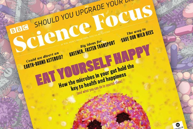 Eat yourself happy: How the microbes in your gut hold the key to health and happiness (and what you can do to nourish them) © Magic Torch