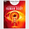 human-body-footer