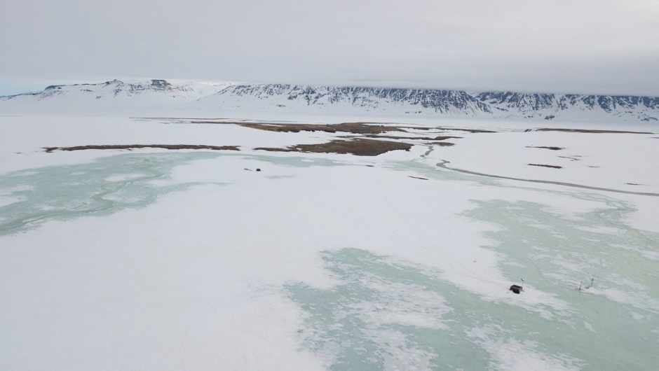 Last year's extreme snowfall wiped breeding of plants and animals in a region of the Arctic © Lars Holst Hansen