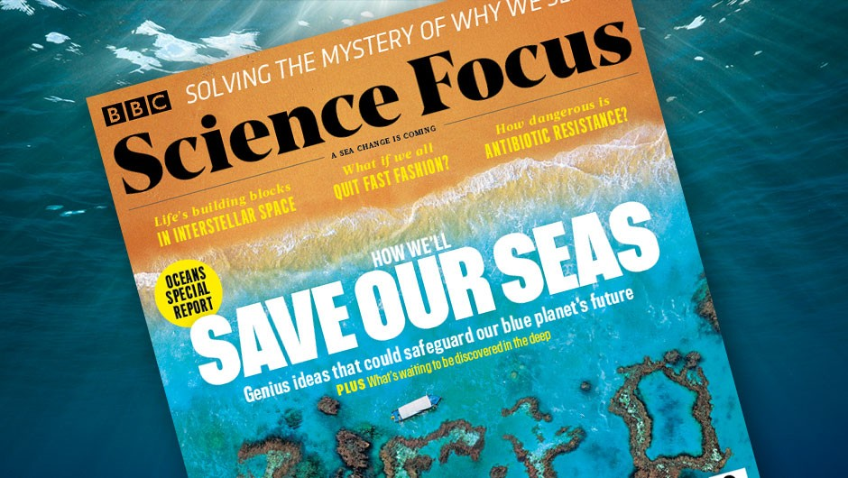How we'll save our seas