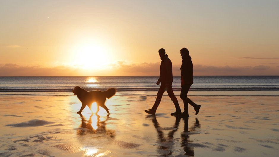 Owning a dog can improve your heart health