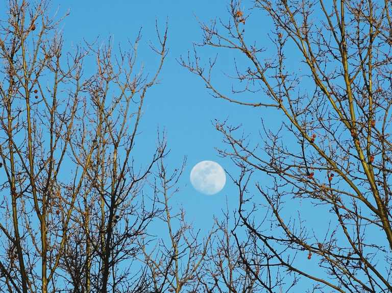 Why is the Moon sometimes visible during the day?