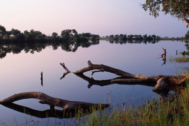 Modern humans can be traced back the Zambezi River in Botswana, study finds © Getty Images