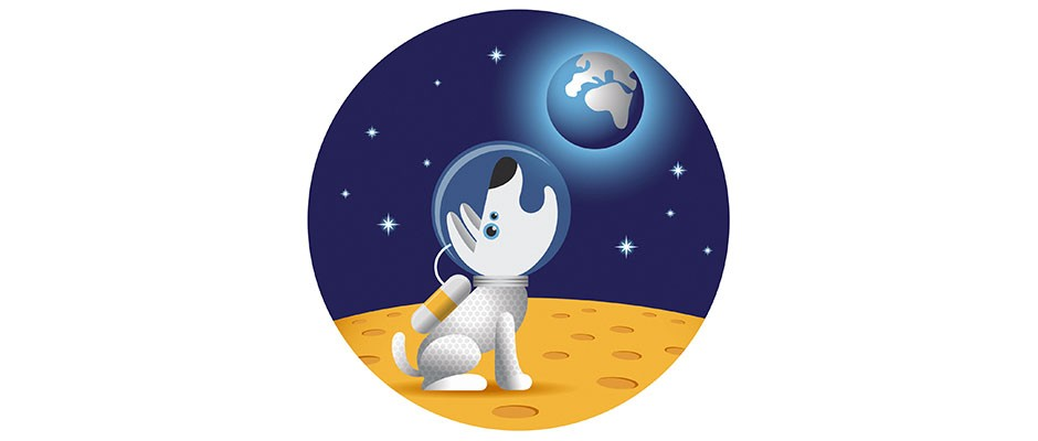 Could we genetically modify an animal so that it could live unaided on another planet or moon?