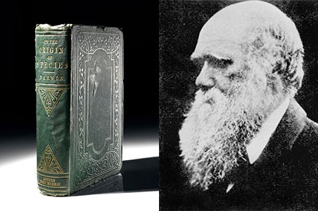 Charles Darwin's On the Origin of Species first edition more than doubles estimated selling price